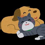 dog_cat_nakayoshi